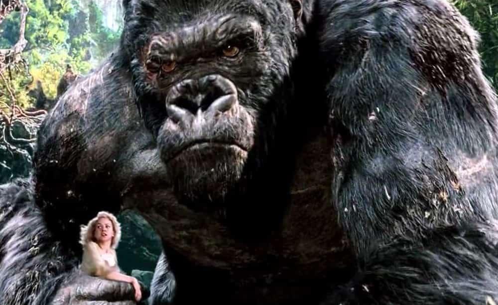 King-Kong-Film-Photo-4